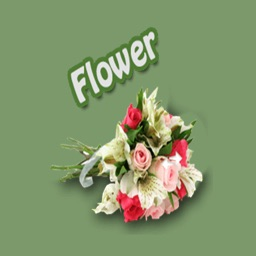 Flowers Stickers Pack FOr iMessage
