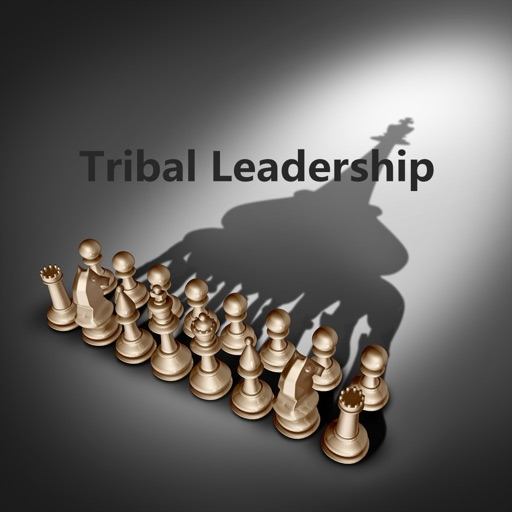 Quick Wisdom from Tribal Leadership-Natural Groups
