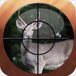 Hunting Map - Colorado