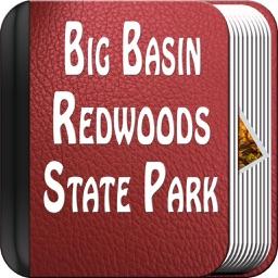 Big Basin Redwoods State Park - USA