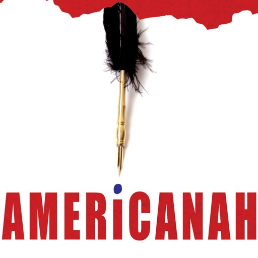 Quick Guide for Americanah-Daily Inspiration