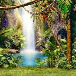 Tropical Rainforest Wallpapers Hd Art Pictures On The App Store