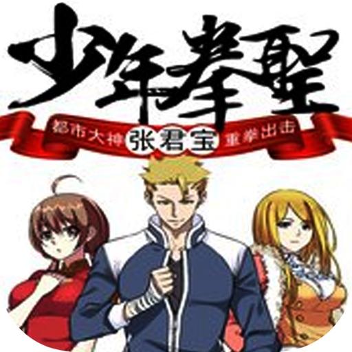 少年拳圣:国术流小说