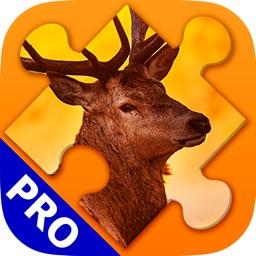 Animals Jigsaw Puzzles. Premium