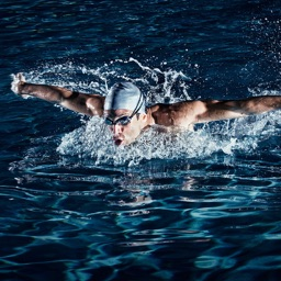 Swimming Speed Training for Beginners