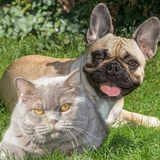 Lou & Emmi