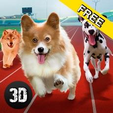 Activities of Dog Racing Tournament Sim 3D