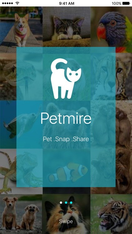 Petmire - Pet Community