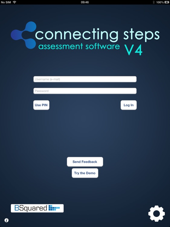 Connecting Steps Assessment Tool