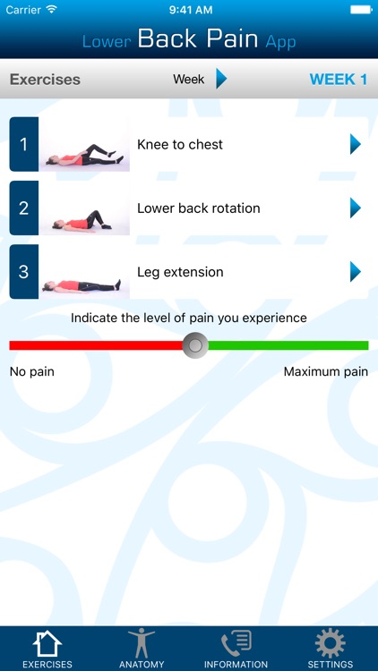 Lower Back Pain App screenshot-1