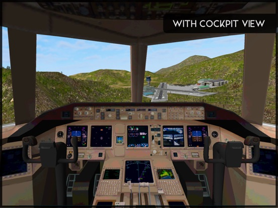 Avon Flight Simulator screenshot