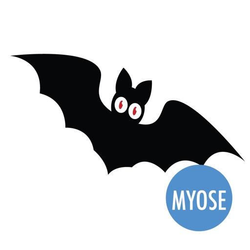 Halloween Bat, Black Cat, Ghosts, Spider - MYOSE