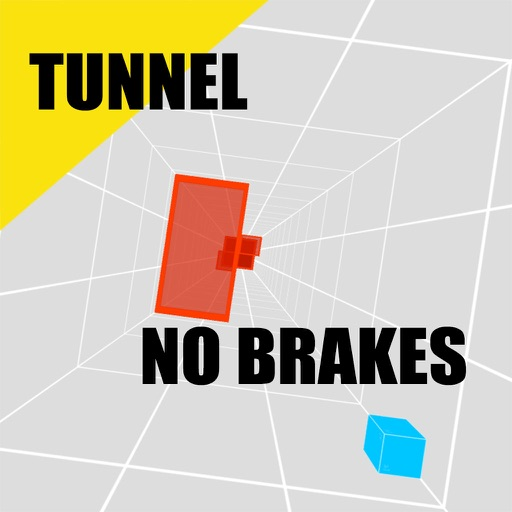 Into The Tunnel : NO BRAKES