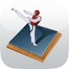 Taekwondo Bible - Poomsae and Terminology