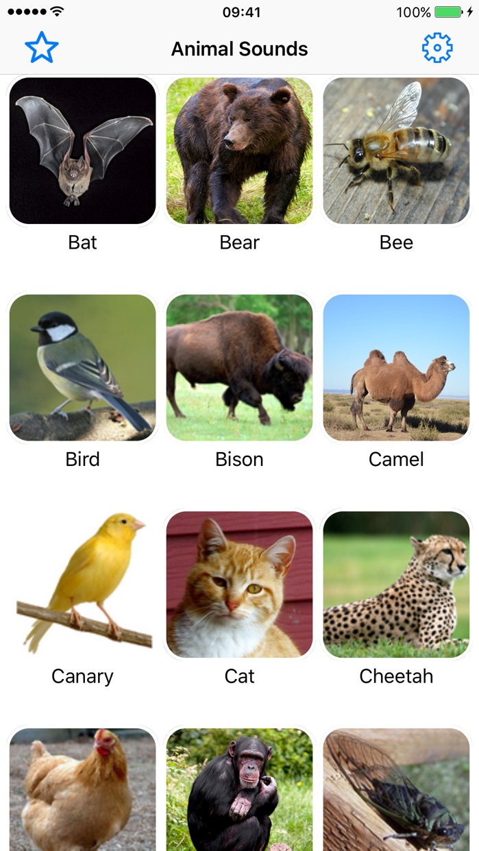 Animal Sounds Voice Effects Simulator for Toddler Screenshot