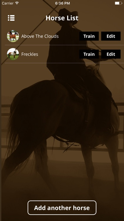 Warwick Schiller's Horse Training Checklist screenshot-2