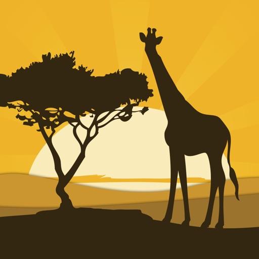 Etosha National Park Visitor Guide
