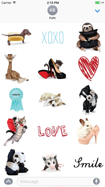 Fashion Pets Stickers