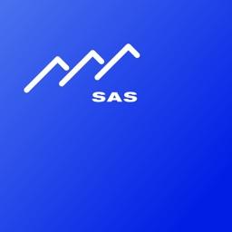 SAS Console