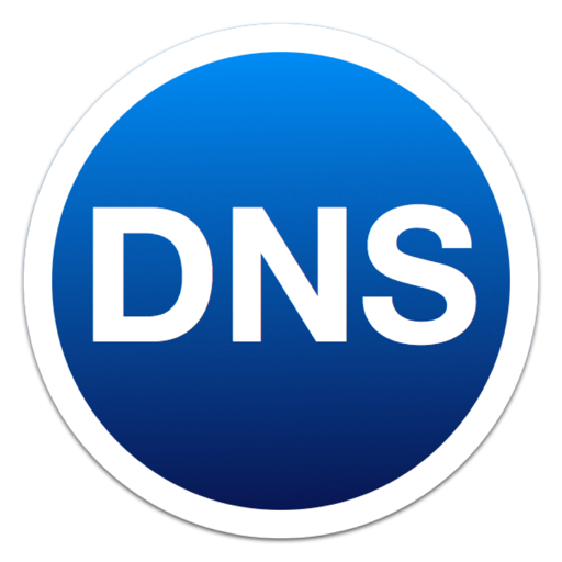 DNS Auto Updater