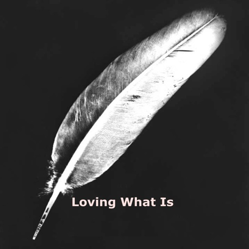 Quick Wisdom from Loving What Is.