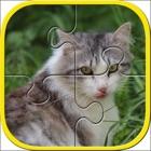 Katzen Jigsaw Puzzles für Kinder icon