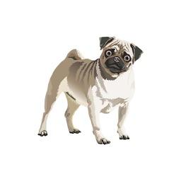 Realistic Dog Art - Dogs, Terrier, Black Lab, Pug