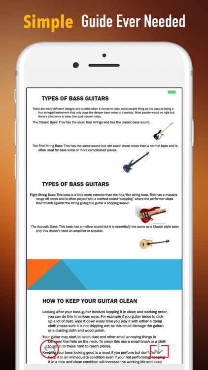 Bass Guitar for Beginners-Learning Tips and Guide