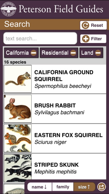 Peterson Field Guide to Mammals of North America screenshot-4