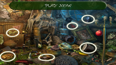 New Hidden Objects screenshot four