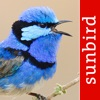 Bird Song Id Australia - Automatic Recognition - iPhoneアプリ