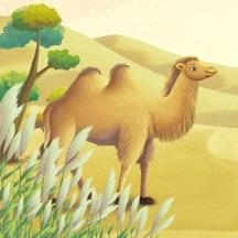 小骆驼出发了-kimikids奇米双语互动绘本