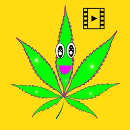 Geafus 420 Animated  Weed Emoji