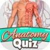 解剖学 测验 免费 科学 教育 游戏