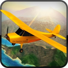Activities of Pilot Simulator Airplane 3d Game