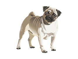 Realistic Dog Art - Dogs, Terrier, Black Lab, Pug