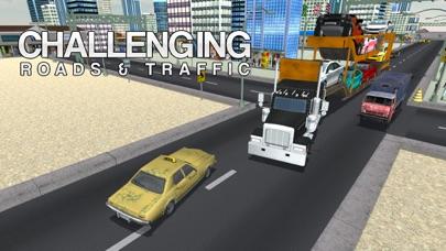 transporte de coches y camiones deber de conducirCaptura de pantalla de3