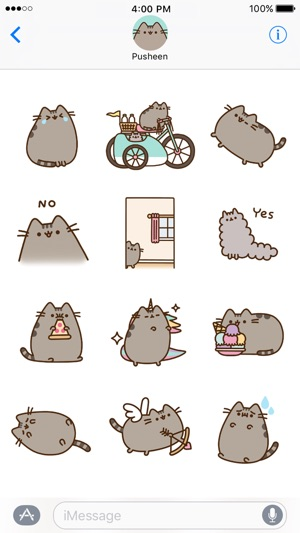 Pusheen Cat Wallpaper Laptop