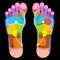 The perfect interactive reflexology chart for both feet & hands