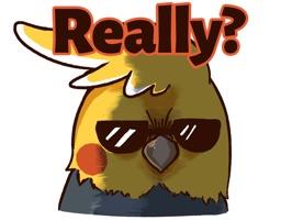 Cheeky Parrot - iMessage Sticker