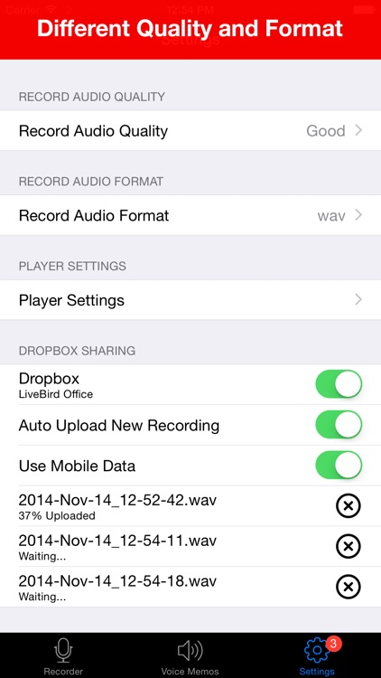 Voice Recorder Lite: HD Audio Recording & Playback screenshot-4