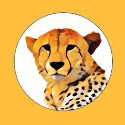 African Wild Animal Stickers