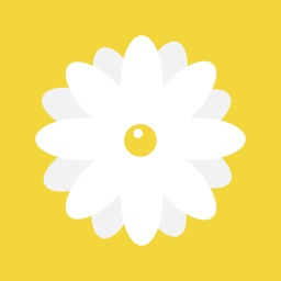 Daisy - Create Healthy and Productive Habits