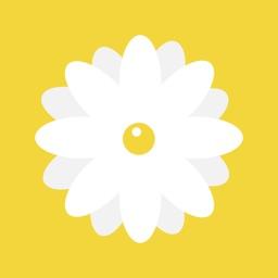 Daisy - Create Healthy and Productive Habits
