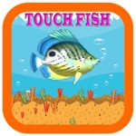 play games catch big fish charm fish