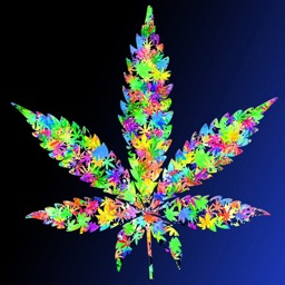 3D Weed Wallpapers HD: Quotes
