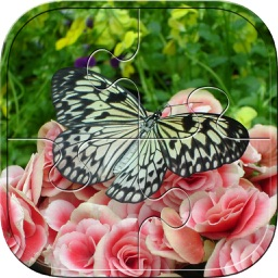 Butterfly Puzzles - Jigsaw Puzzle Game For Kids
