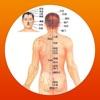 人体穴位图解按摩大全免费版HD 家庭自我保健中医经络养生与健康专家 - iPhoneアプリ
