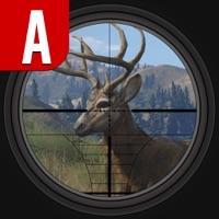 Codes for Safari Adventure Hunting : Season Africa 3D 2016 Hack