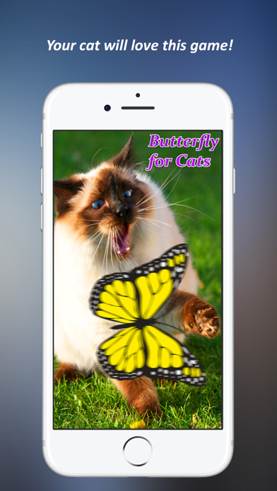 Butterfly Games for Cat screenshot one